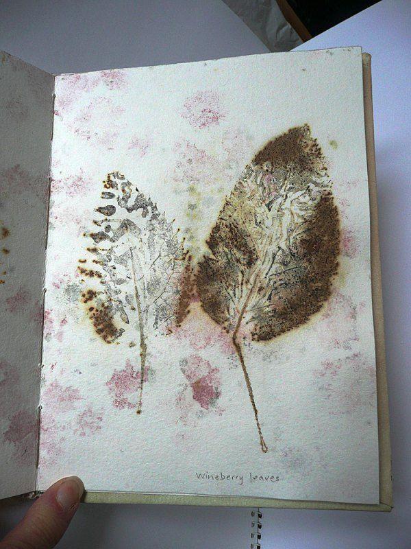 Eco print on paper - wineberry