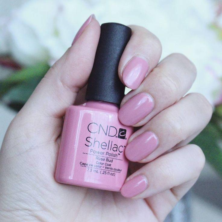 @pinkbeautyspy pytala, co mam na paznokciach. Aktualnie @cndworld #cndshellac w kolorze #rosebud A co na paznokciach ma @idaliablog @niesia25 oraz @rock_glam_princess ❔😊💅 #mani #manicure #nails #pink #iloveit #nailcolor