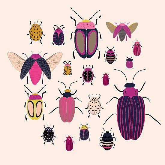 Beetles #nature #illustration #design #art #instaart #instagood #surfacepattern #surfacepatterndesign #pattern #beetles #insects #bugs #print #art_we_inspire #picame