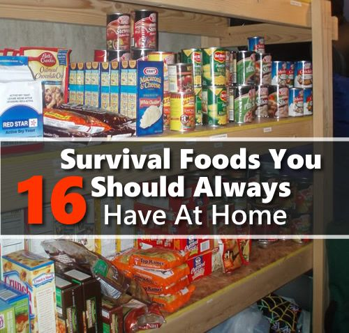 16 Survival Foods You Should Always Have At Home
