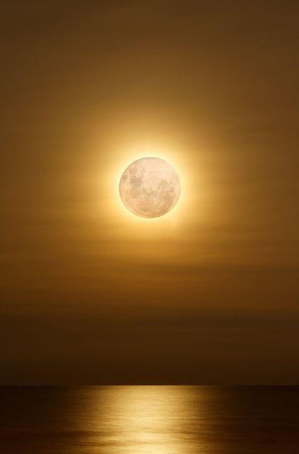 Eclipse al atardecer.