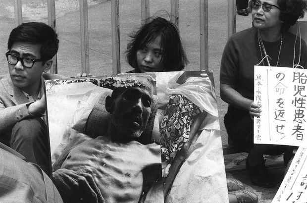 Ishimure Michiko and Global Ecocriticism: Acknowledging Minamata disease…