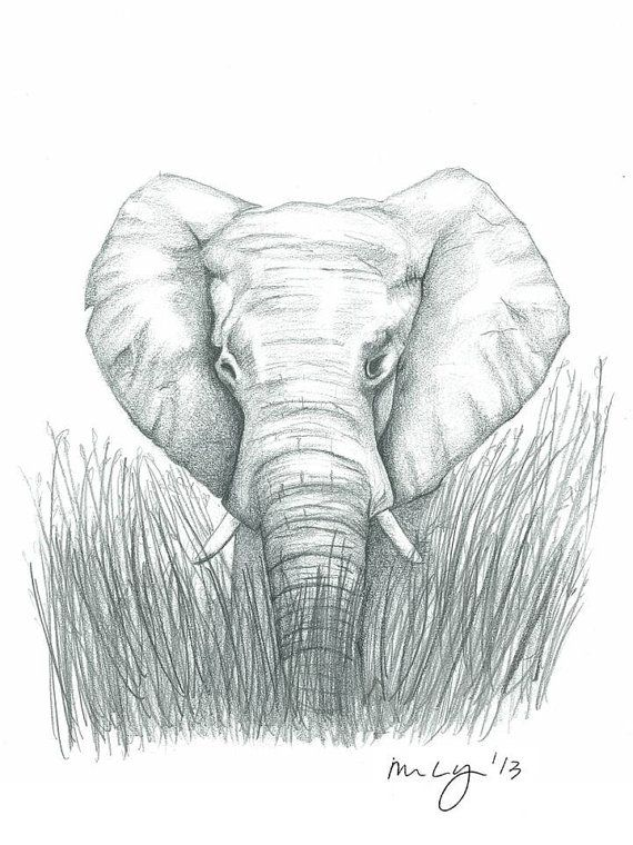 Elephant Illustration all proceeds towards by MegansCozyCreatives, $4.00