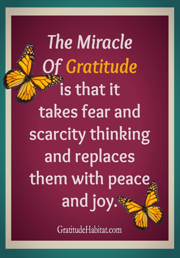 a7c4c831bd3ee6bfa81e71ec4eae1e06--attitude-of-gratitude-gratitude-quotes.jpg