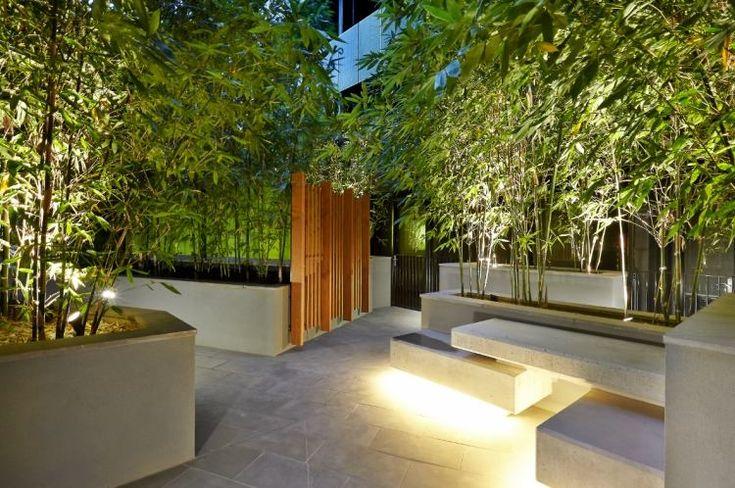 terrasse carrelée avec bancs en ciment et beaucoup de bambous