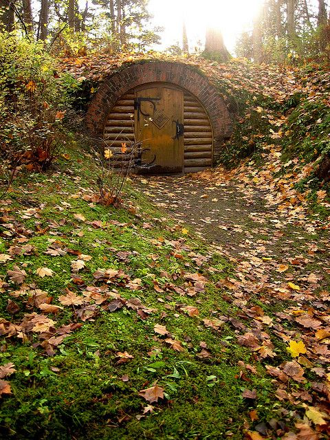 Hobbit hole for the little ones. Yes, I am going to push lotr love onto them