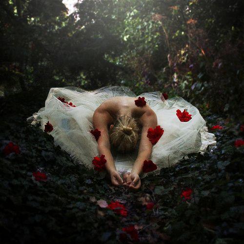 The Dancer's Garden | Flickr - Photo Sharing!