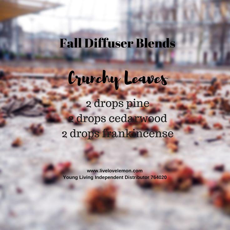 Fall Diffuser Blends