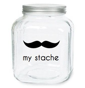There's a double meaning in that.Gift Ideas, Piggies Banks, Change Jars, Stache Jars, Mason Jars, Mustache, Diy, Money Jars, Crafts