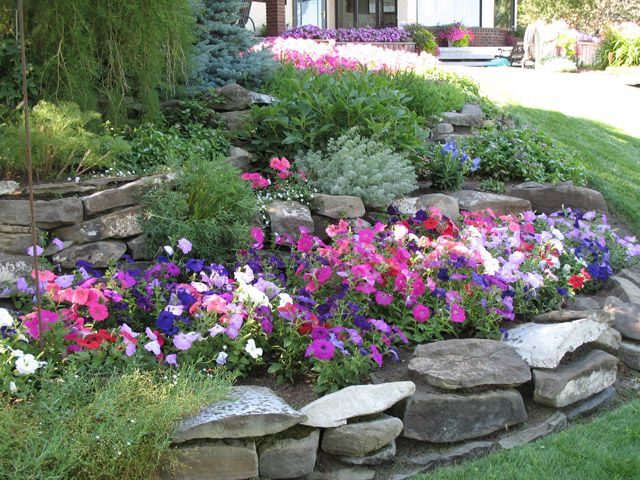 Best 801 Sensory garden ideas ideas on Pinterest | Garden deco ...