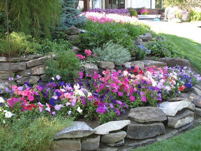 Another pretty garden i love the sea of colour set for Pretty garden ideas
