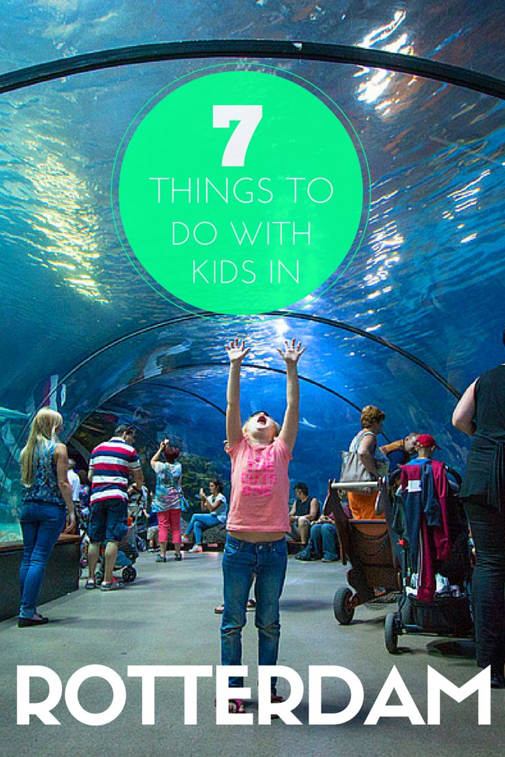 7 Things To Do In Rotterdam, Netherlands With Kids (Your Kids Will Go Nuts For #7). Includes Rotterdam Zoo, Pannenkoekenboot, Splashtours, Plaswijck Park and more. TRAVEL WITH BENDER | Family Travel in Rotterdam, The Netherlands (Holland) made easy.