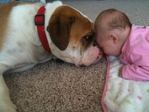 :-): A Kiss, Best Friends, Acropia Pet, True Love, Cute Kids, Favorite Personalized, Baby, Agthendr Natureawwwwww, Animal