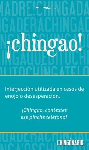 ¡Chingao! (chingonario19)