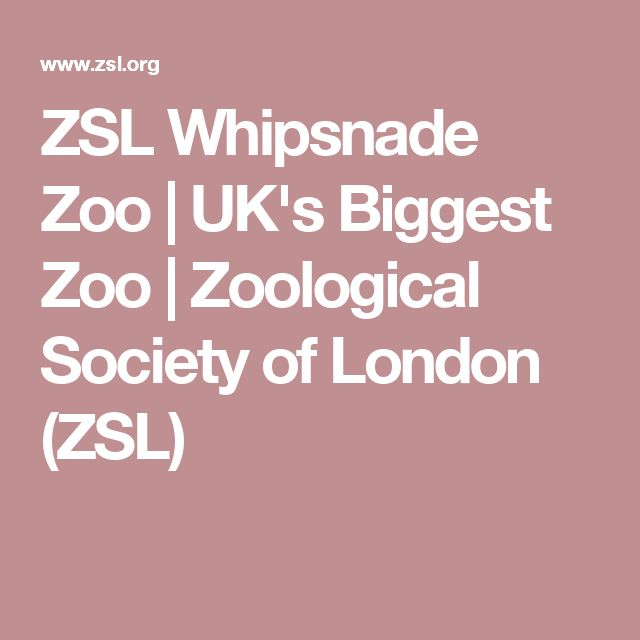 ZSL Whipsnade Zoo | UK's Biggest Zoo | Zoological Society of London (ZSL)