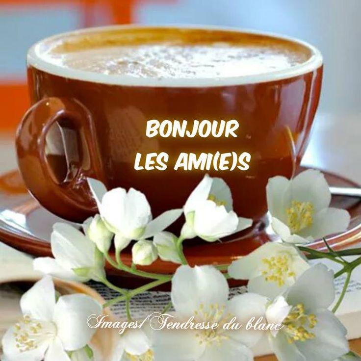 Mardi 9 janvier  A7c7b8a14650586e9cbdb96af05b3e93--bonjour-cafe-images-photos