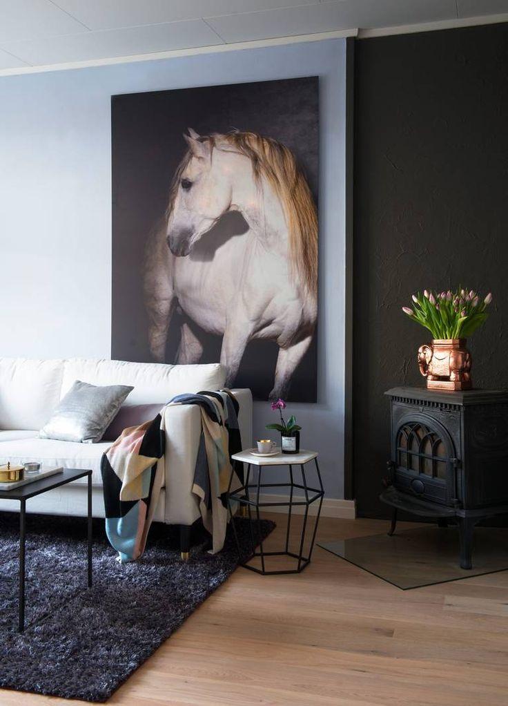 VÆR PERSONLIG: Beboer mener at dersom man tilfører innredningen noepersonlig, er det med på å skape et spennende hjem, ulikt andres. Selvhar hun en fortid som hestejente. Det kommer til uttrykk gjennom bildetpå stueveggen. Copycat.no har produsert bildet på tre millimetershvitlakkert aluminium. Pleddet i sofaen er fra Eske.