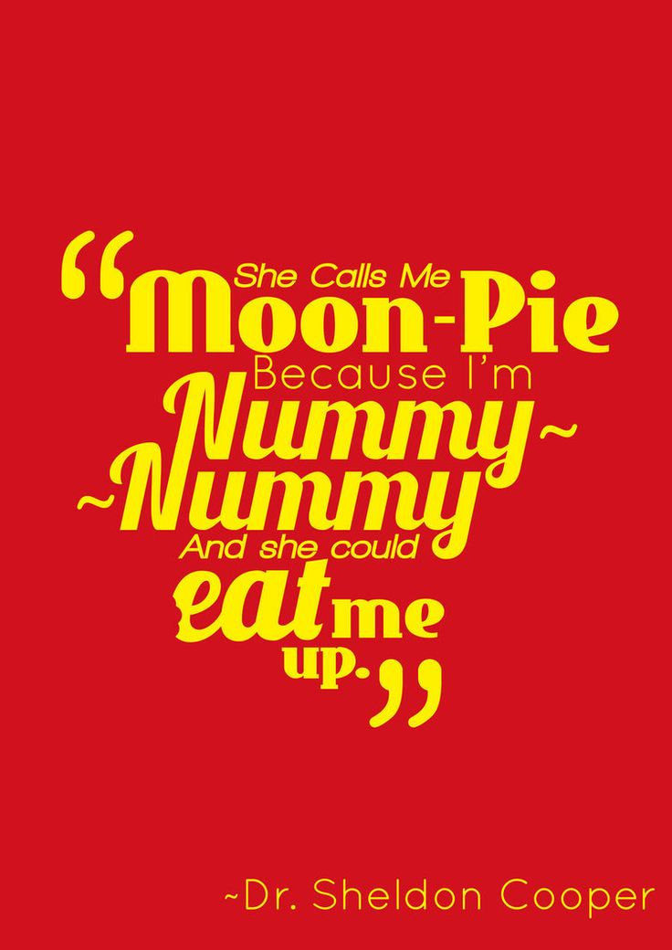 Quote from The Big Bang Theory- Dr Sheldon Cooper aka Moon-Pie. Design Based on his FLASH shirt. Commission From Morgan Lee. Please Credit Me.