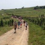 Une école du territoire de Belfort est venu profiter découvrir l'Alsace.