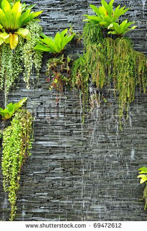 a waterfall on the stone wall with the green plants