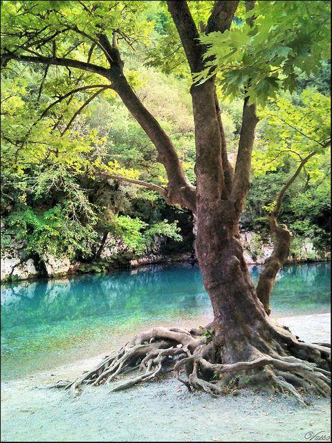 Voidomatis river, Vikos gorge