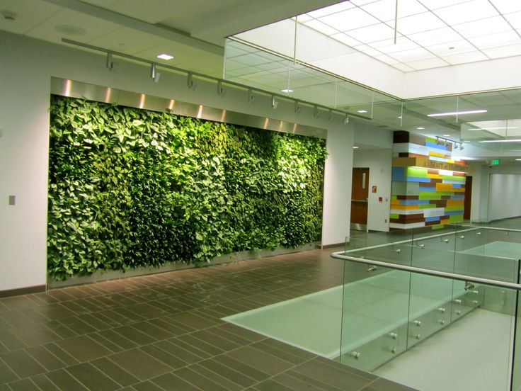 Living green wall to be installed morning ag clips - Interior design schools buffalo ny ...