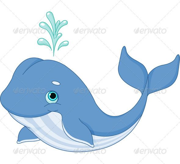 Whale Cartoon - Animals Characters