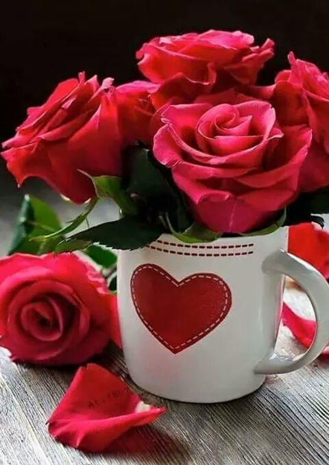 @just4star welcome friend