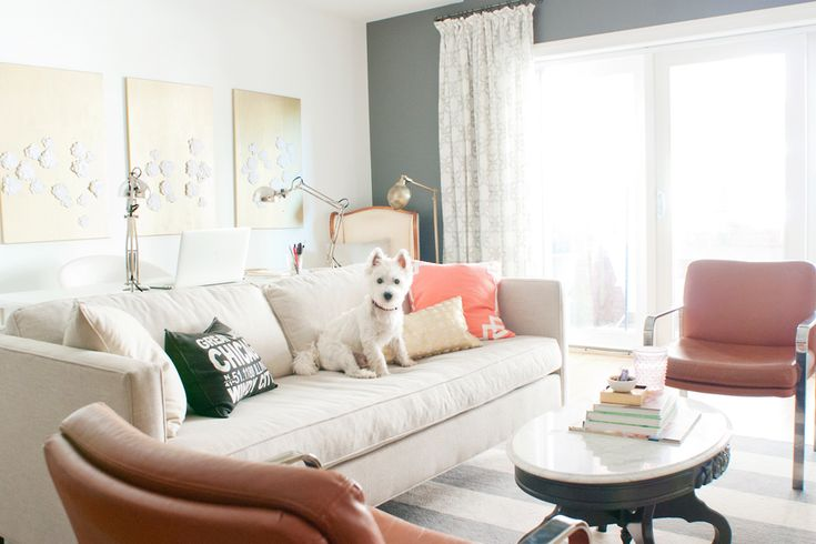 Pet Friendly Home Tour: Jess Lively & Franklin | Pretty Fluffy