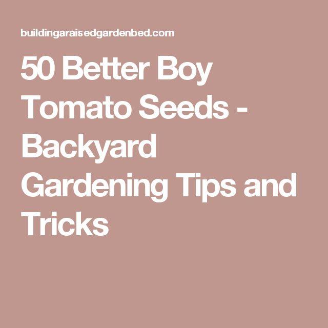 50 Better Boy Tomato Seeds - Backyard Gardening Tips and Tricks