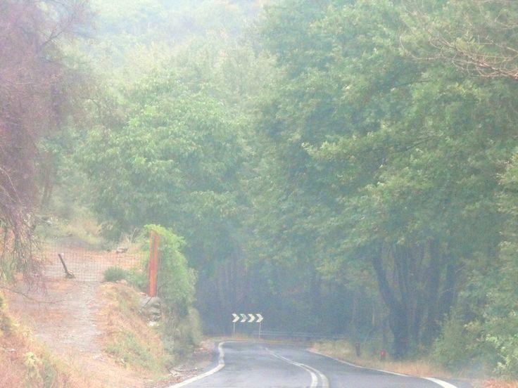Coming from Sparti down a foggy Taiygeto mountain into Kalamata Greece.. breathtaking