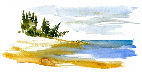 watercolor of Pinewood forest  along the Baltic Sea, Bornholm,  Denmark #HikingArtist