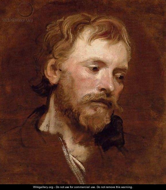A bearded man, a study - Sir Anthony Van Dyck, 2nd half of XVII cent.