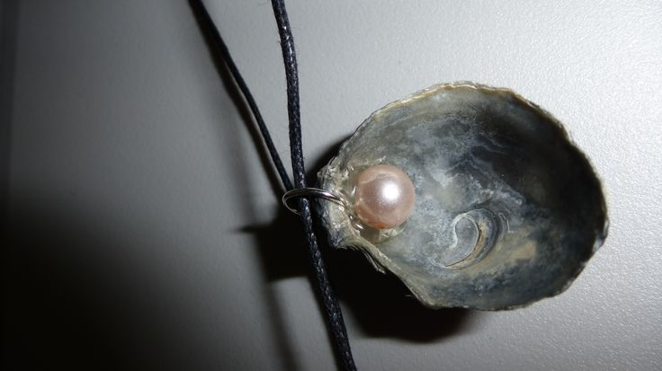 Oyster shell with pearl bead pendant.