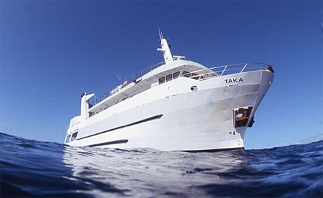 Taka Dive-5 Day / 4 Nights Cod Hole-Coral Sea from $1635  Visit Taka Dive-5 Day / 4 Nights Cod Hole-Coral Sea  #cairnstourpackages