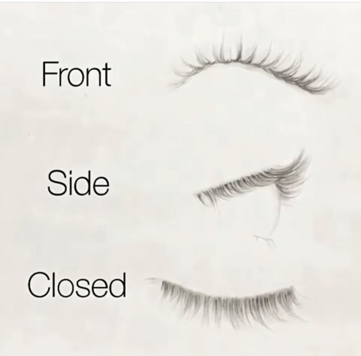 Eyelash drawing from different perspective