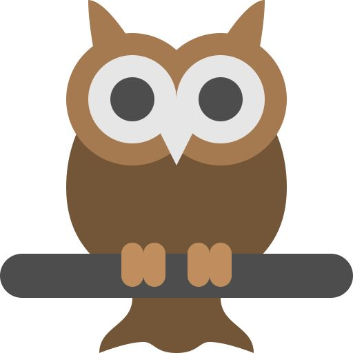 Big, bird, eyes, night, owl, vision, wild icon