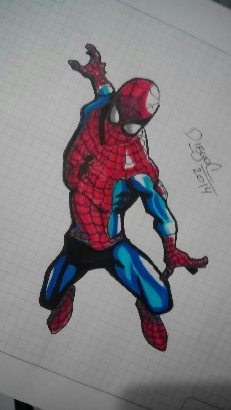 Spider sketch markers.