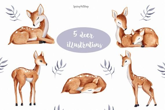 Cute Baby Deer Watercolor Clipart Spring Flower Clipart Etsy