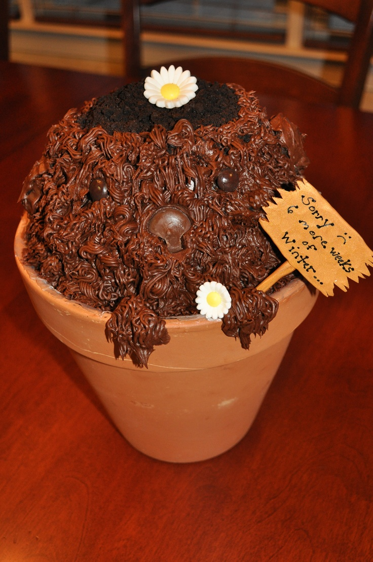 Our Groundhog Day cake.. yep-with a forecast like that, we will ...