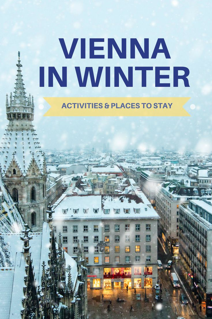 The atmosphere of Vienna in winter is pretty special. Every year, Vienna's prettiest squares turn into magical Christmas markets. There are many things to do in Winter in Vienna: whether you prefer wandering the cobblestone lanes or ice skating at one of many outdoor arenas.