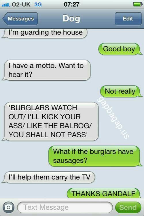#Funny Text About Dog vs. Burglars