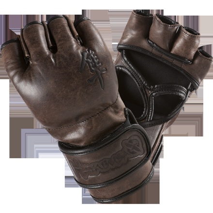 Kanpeki Elite MMA Glove.  Very reliable all purpose glove.  Its served me very well.  :)