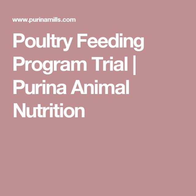 Poultry Feeding Program Trial | Purina Animal Nutrition