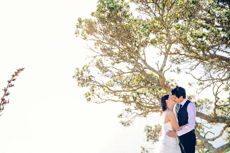 wedding photoshoot  three:twentythree auckland wedding and engagement photographer