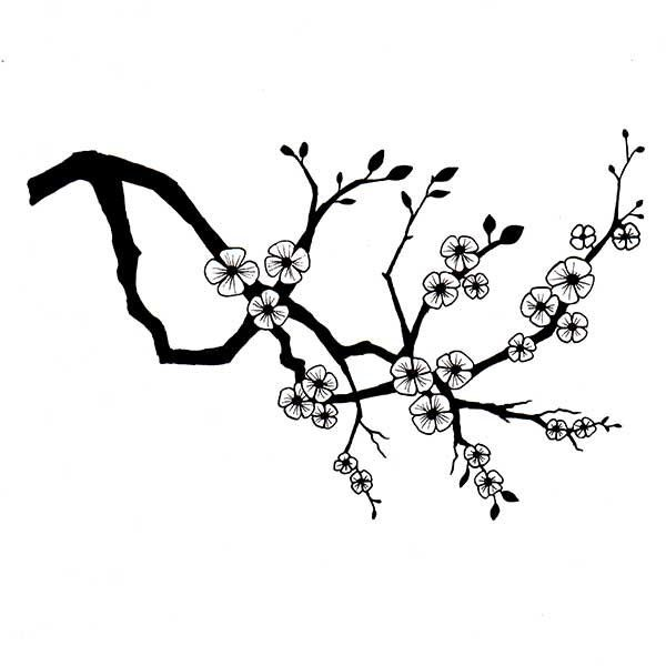 Lav176 Cherry Blossom By Lavinia Stamps Clear Polymer Stamp Etsy Cherry Blossom Branch Branch Drawing Lavinia Stamps