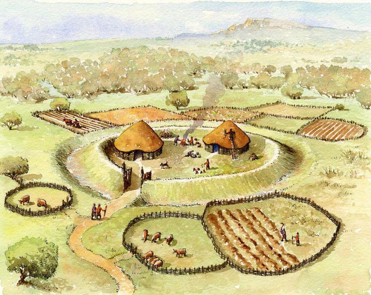 Iron Age Irish ráth (circular enclosure) farming community.