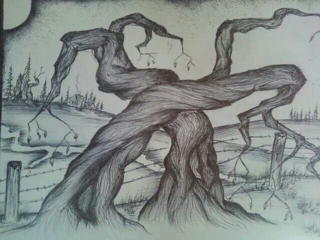 scenic pen drawing #peaceful  #picoftheday #handdrawn #sketch #trees#picoftheday