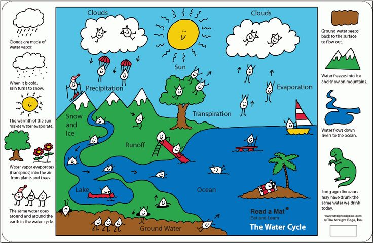The water cycle placemat for kids. #preschool #elementary