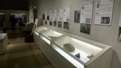 小田原の地球博物館で企画展石展かながわの大地が生み出した石材が開催中 神奈川の石にまつわるエピソードなどを学べる展覧会ですよ 石臼などの製品や石を加工する道具など約点が展示されています 石について学べるイベントなんかなかなかないから貴重なイベントだよね tags[神奈川県]
